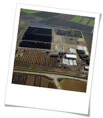 Aerial Shot of Composting Facility
